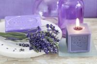 Lavender II Fine Art Print