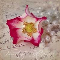 Rose Romance III Fine Art Print