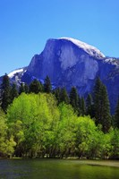 View of Half Dome rock and Merced River, Yosemite National Park, California Fine Art Print