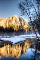 Yosemite Falls reflection in Merced River, Yosemite, California Fine Art Print