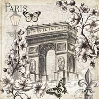Paris in Bloom II Framed Print