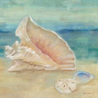 Horizon Shells III Fine Art Print