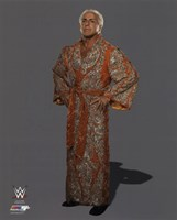 Ric Flair Posed Fine Art Print