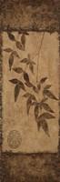 Vert Leaves Choc Brown Left 1 Framed Print