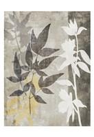Misty 2 Fine Art Print
