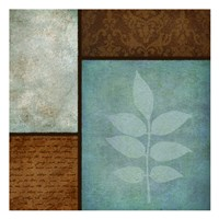 Patterns And Ferns 2 Framed Print