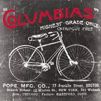 Antique Bicycle II Fine Art Print