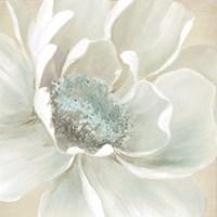 Winter Blooms I Framed Print