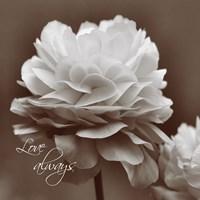 Sepia Blossoms II Fine Art Print