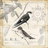 Botanical Birds Black Cream II Fine Art Print