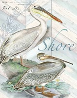 Shore Birds I Framed Print