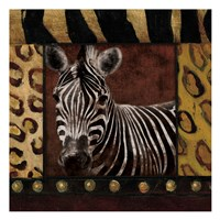 Zebra With Border Framed Print