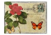 Vintage Butterfly Postcard II Framed Print