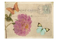 Vintage Butterfly Postcard IV Framed Print