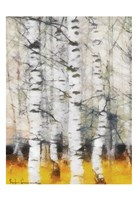 Saffron Timber Panel IIB Framed Print