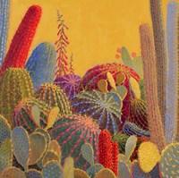 Desert Garden 3 Framed Print