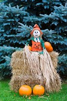 Wisconsin Autumn haystack, Halloween decorations Fine Art Print