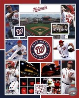 Washington Nationals 2015 Team Composite Framed Print