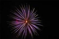 Fireworks Fine Art Print