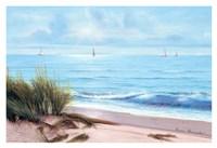 Sandpiper Beach Fine Art Print