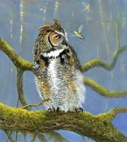 Fearless Owl Fine Art Print