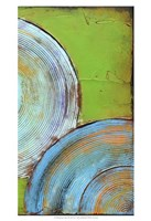 Spring Congo II Framed Print