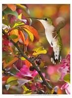 The Flower Dance XVII Fine Art Print