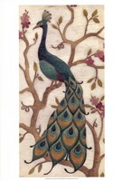 Peacock Fresco II Fine Art Print