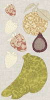 Contour Fruits & Veggies VIII Framed Print