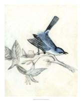 Rustic Aviary III Framed Print