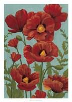 Poppy Promenade I Framed Print