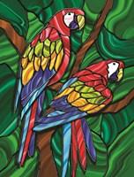 Parrot B Fine Art Print