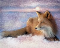 Winter Fox Fine Art Print