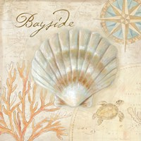 Nautical Shells II Fine Art Print