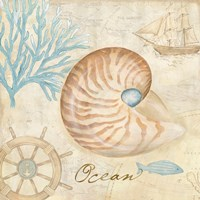 Nautical Shells III Fine Art Print