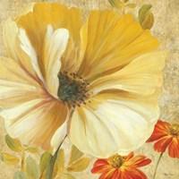 Primavera I Framed Print