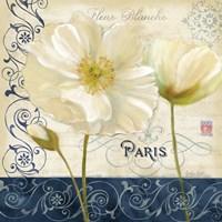 Paris Poppies Blue Trim I Framed Print