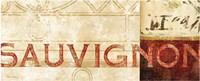 Vin Sign IV Framed Print