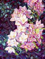 Cascade Fine Art Print