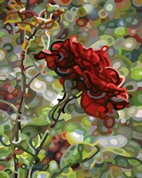 Last Rose Of Summer Fine Art Print
