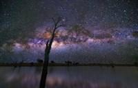 Night Sky 4 Fine Art Print