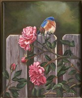 Blue Bird Fine Art Print