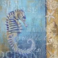 Sea Horse and Sea Fine Art Print