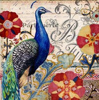 Peacock Decore I Framed Print
