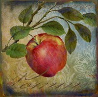 From The Grove Apple Framed Print