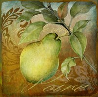 From The Grove Pear Framed Print