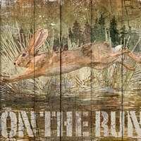 Rabbit on the Run Fine Art Print
