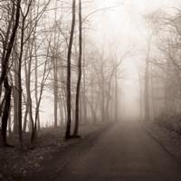 Foggy Path Fine Art Print