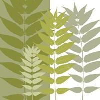 Garden Greens Framed Print