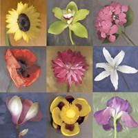 Flower Nine Framed Print